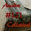 #1j1ancetre - #1j1collateral - 10 juillet