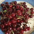 Un été aigre-doux, fruits de saison
