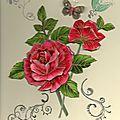 roses099