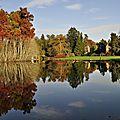 Arboretum de la balaine.