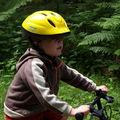 Petit tour en forêt