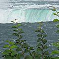 Les Chutes du Niagara (3)