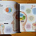 Autour du cerveau