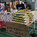 Hamamatsu shinkansen depôt i