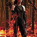 Katniss Catching Fire Variety
