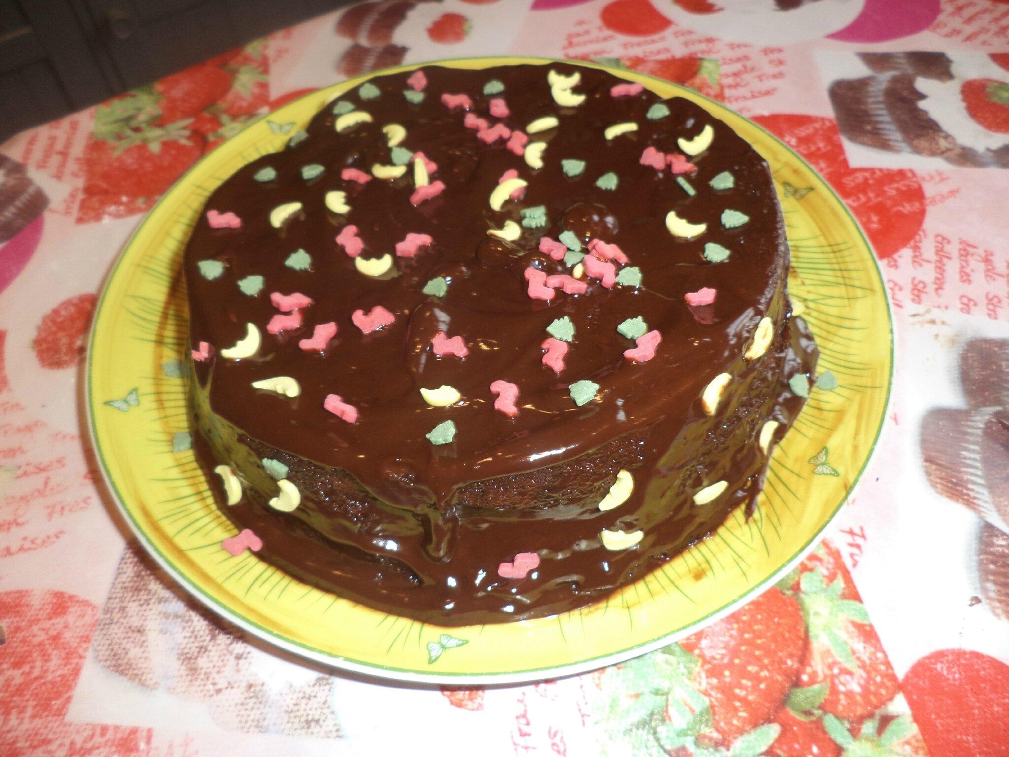 Gâteau au chocolat ultra rapide