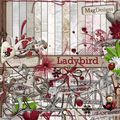 Ladybird + freebie