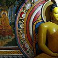 Un voyage au sri lanka été 2014