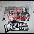 Triple h et undertaker - wrestlemania 28