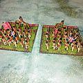 [blucher] armée anglaise de juin 1815