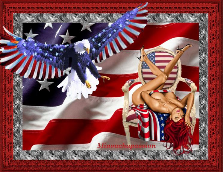 L'Amérique vu par Minouchapassion pour mes ais (esà Américains