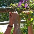 Partition à 4 mains pour un jardin tiré aux 4 épingles !