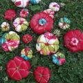 Des potirons, des fleurs coussins, des ??????