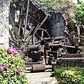 Le jardin LATOUCHE au Carbet
