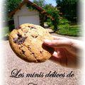 Les vrais cookies américains !!!