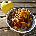Porridge aux pommes