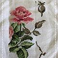 Une suite de l'étude botanique de la rose