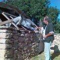 Manu et le cheval assoiffé