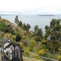 Isla del sol - bolivie