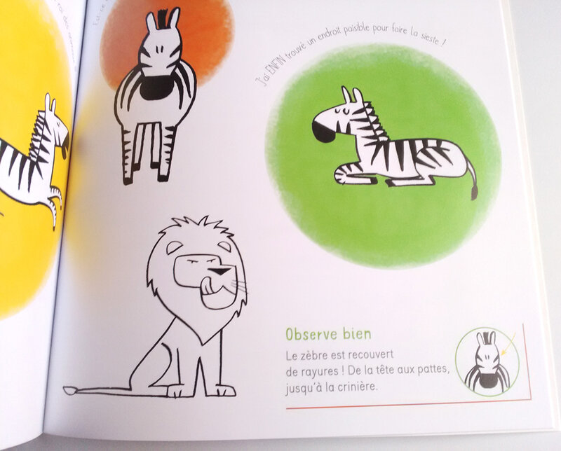dessiner-animaux---thomas-tessier-10