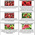 Liste des plants de petits fruits disponible chez prunelle & ortie!