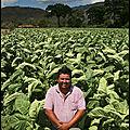 Honduras©fainsilber