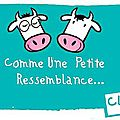Comme une petite ressemblance n°8