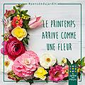 🌸 le jardin... des fleurs.. bon lundi belle semaine a tous ! 🌸