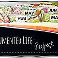 The documented life projet (semaine11)