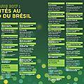 Brasilidade : le brésil à livre paris 2017