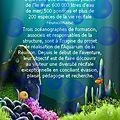 Aquarium de saint-gilles (1/4) (mon week-end à la saline les bains)