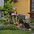 jardins fleuris 0600061