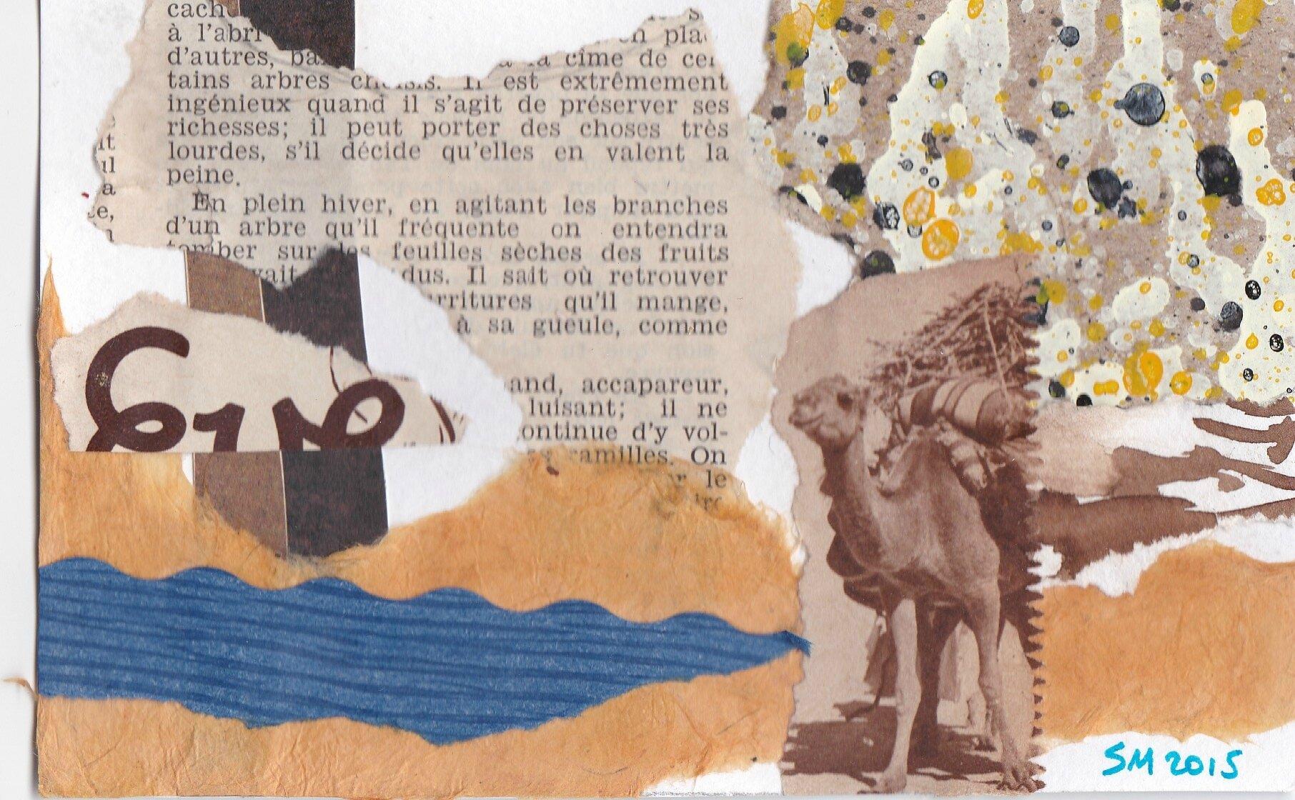 fundacion prosama argentine agua y vida