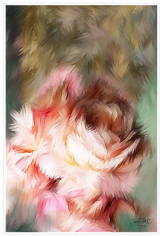 La-rose-et-l'automne