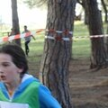 cross district 2013 (24)