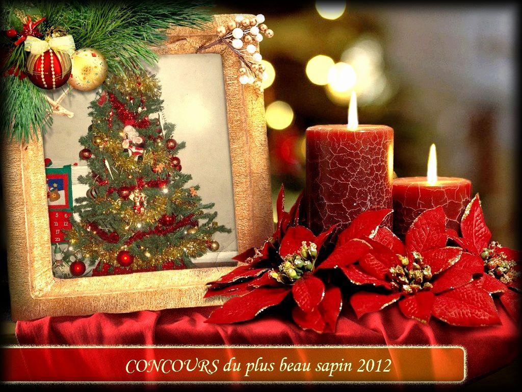 concours du plus beau sapin 2012