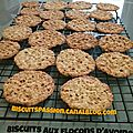 Biscuits aux flocons d'avoine 043
