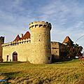 Le château de la roche ( 63 chaptuzat )