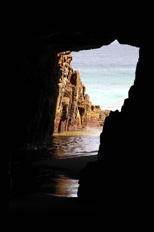 Tasman peninsula29