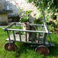 Mon vieux pepere adore les balades en chariot ....