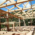 (F50)- Chantier du Saha Forest Camp