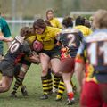 66IMG_0832T