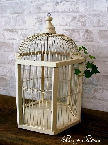 cage oiseau blanche