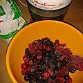 Recette du yaourt glacé (frozen yogurt)
