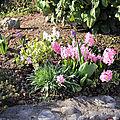 Vive le printemps !!!