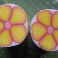 canes fleurs idril