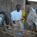 Samba Oumar Boulo BA, Artiste Traditionnel de Kanel