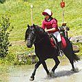 poneys Landais