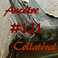 #1j1ancetre - #1j1collateral - 17 juillet