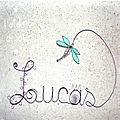 Lucas prénom libellule